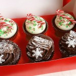 HBC - Xmas - Candy Cane Red Velvet & Chocolate Yule Log